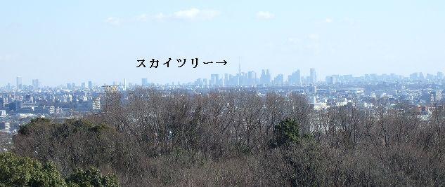 2月11日(火) 百草園_d0048312_16464772.jpg