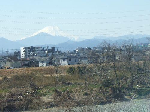 2月11日(火) 百草園_d0048312_16491557.jpg