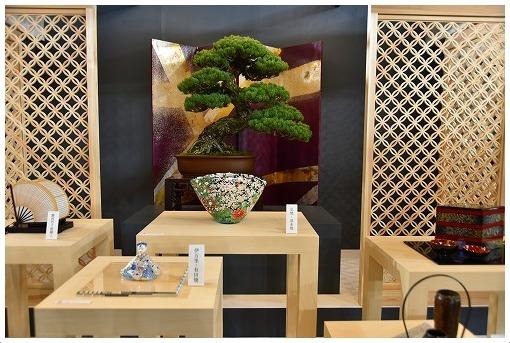 2020東京ドーム・テーブルウェアフェスティバル_a0134114_13443763.jpg