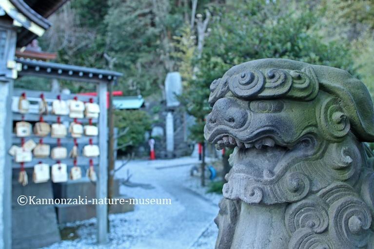 浦賀の町を歩く_a0386621_14334241.jpg