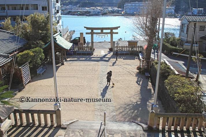 浦賀の町を歩く_a0386621_14542232.jpg