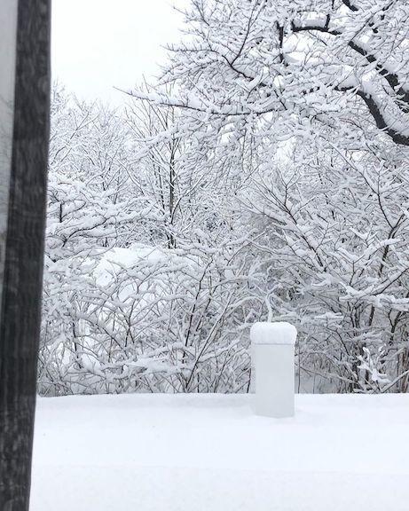 雪のなかのピクニック_e0396727_12115696.jpg