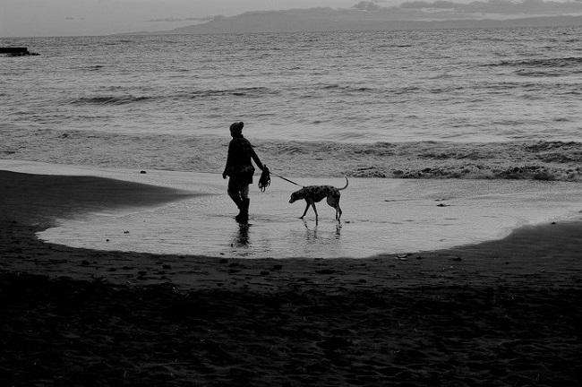 海辺の散歩_d0264733_19173830.jpg