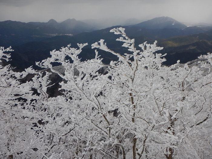 霧氷を求めて高見山へ_c0038434_21181099.jpg