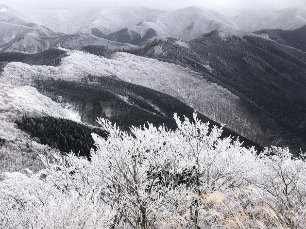霧氷を求めて高見山へ_c0038434_21181568.jpg