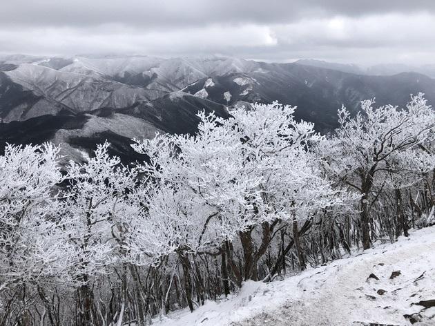霧氷を求めて高見山へ_c0038434_21182044.jpg