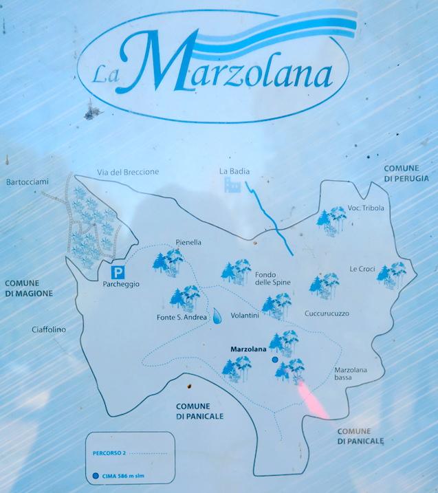 青い空 青い山 青いトラジメーノ湖_f0234936_0313699.jpg