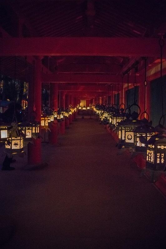 しあわせ回廊奈良瑠璃絵①~春日大社_e0363038_11223512.jpg