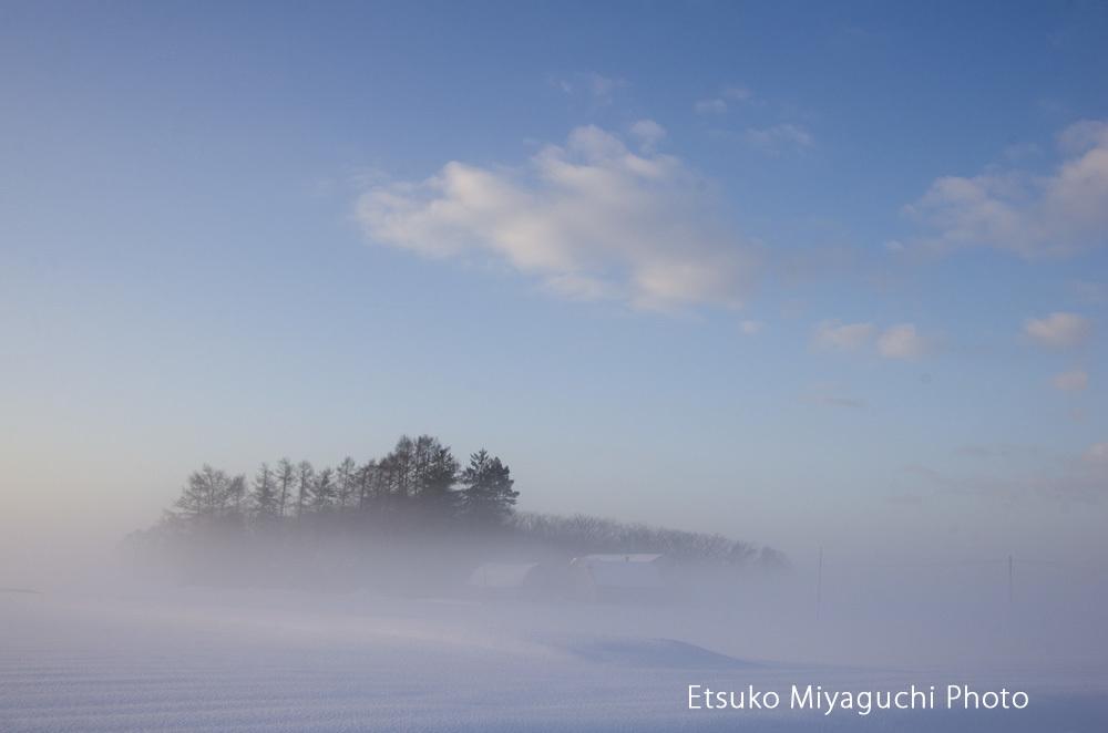 朝霧に浮かぶ_f0152939_05070065.jpg