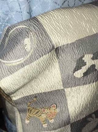 新年会・野村エミさん・伊と幸色無地にまいづる干支の帯。_f0181251_13493244.jpg