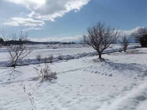 ようやく積雪!_b0092858_13591715.jpg