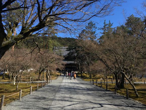 南禅寺(京都市)_d0339676_13570912.jpg