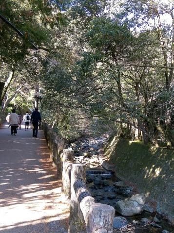 ◆滝へ・・・_e0154682_23463760.jpg