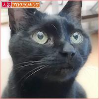 期待の箱娘_a0389088_18425400.jpg