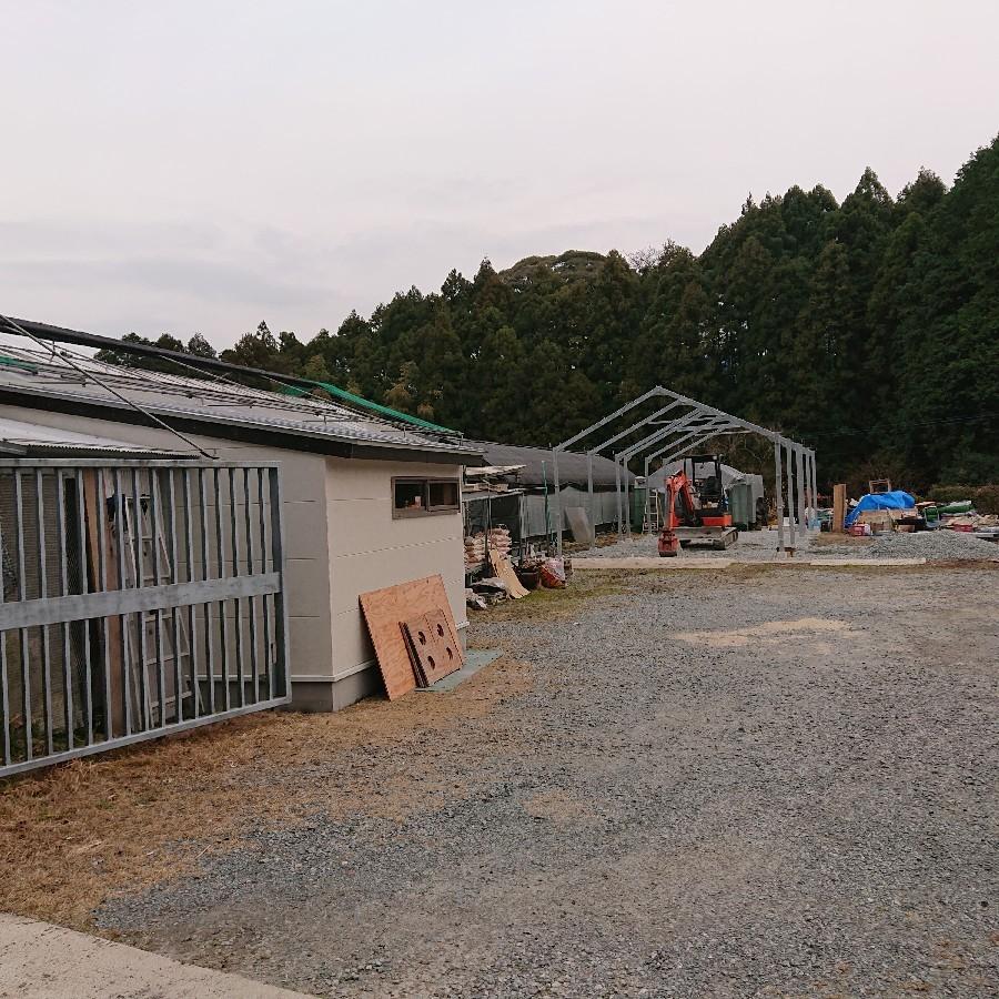 新設栽培所の途中経過_f0356792_13125643.jpg