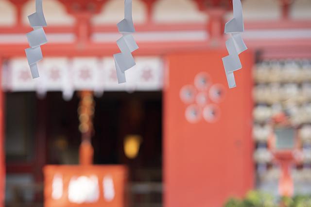 荏柄天神社の白梅が見ごろです_b0145398_22301310.jpg