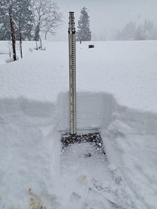 自宅裏の積雪深を測ってみました_c0336902_20304220.jpg