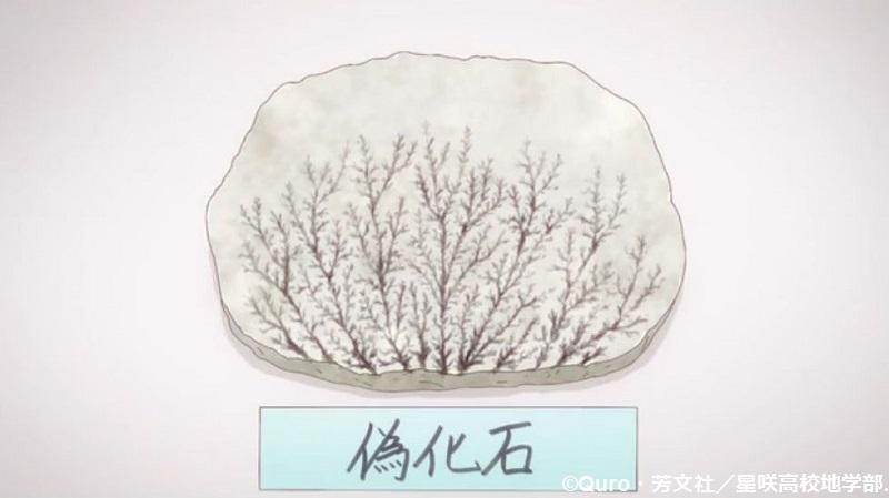 「恋する小惑星」舞台探訪004-1/3 第4話 つくば駅周辺、そして地質標本館へ_e0304702_07492283.jpg