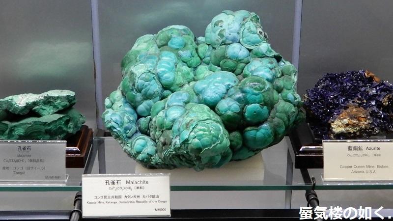 「恋する小惑星」舞台探訪004-1/3 第4話 つくば駅周辺、そして地質標本館へ_e0304702_08010867.jpg