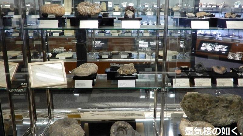「恋する小惑星」舞台探訪004-1/3 第4話 つくば駅周辺、そして地質標本館へ_e0304702_08013452.jpg