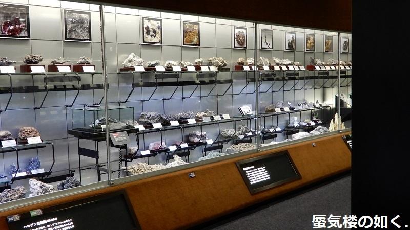 「恋する小惑星」舞台探訪004-1/3 第4話 つくば駅周辺、そして地質標本館へ_e0304702_08040020.jpg