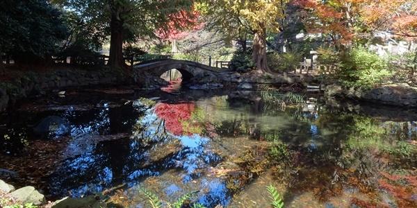 井の頭公園散策_c0051105_00134329.jpg
