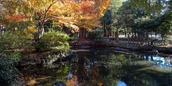 井の頭公園散策_c0051105_00142674.jpg