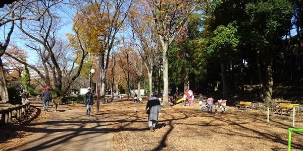 井の頭公園散策_c0051105_00151246.jpg