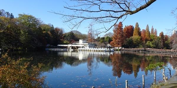 井の頭公園散策_c0051105_00154501.jpg
