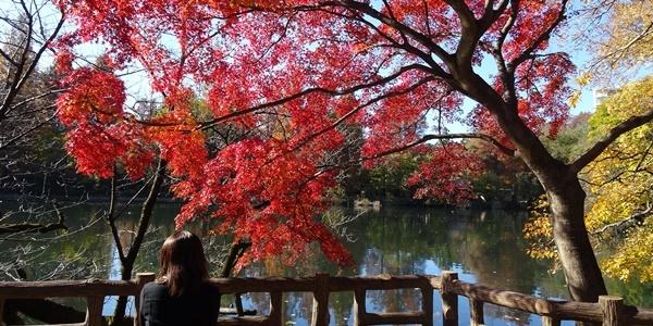 井の頭公園散策_c0051105_00160777.jpg