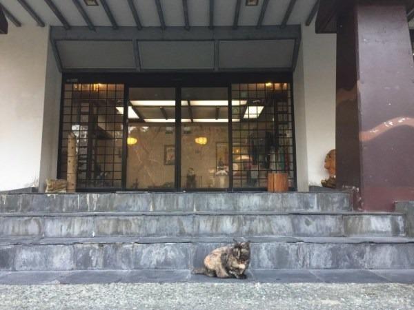 鹿児島、熊本、京都の2泊3日を1時間半で書きました。入荷フランスハンティングジャケット、USオーバーオールなど_f0180307_17364583.jpg