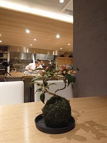 成田山新勝寺の参道沿いにオープンです!_d0091909_14484918.jpg