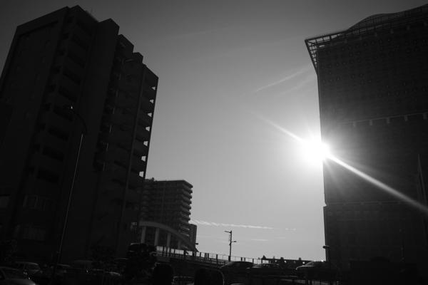 2020.02.12 冬の陽_a0390712_17063564.jpg