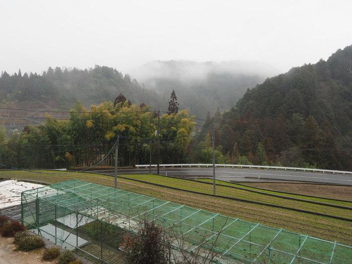 雨の一日_c0116915_22014839.jpg