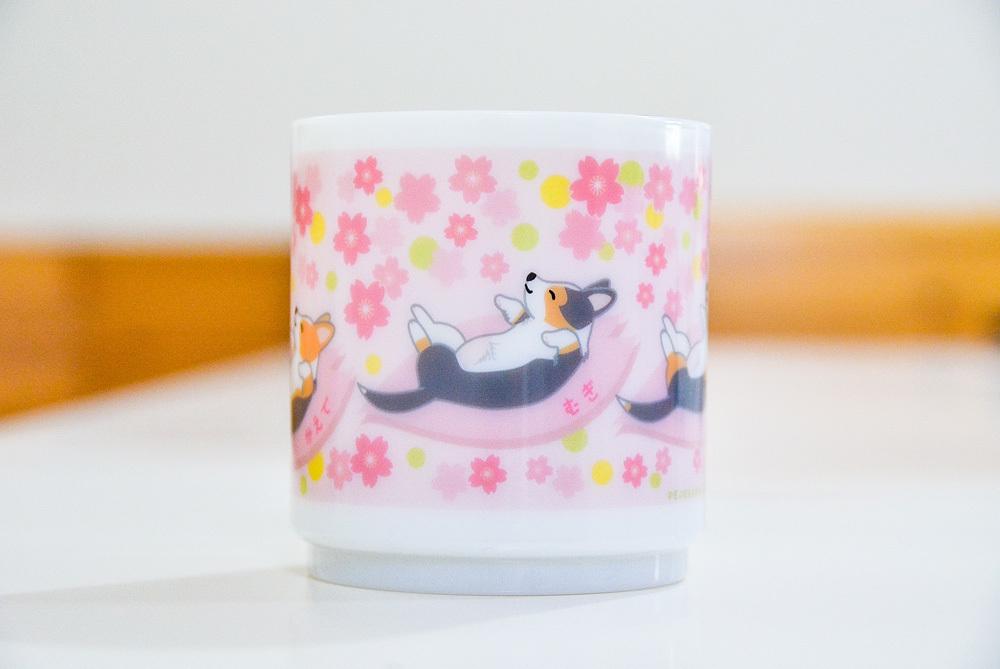 くうちゃん・かえでちゃん・むぎちゃん 桜プラマグ_d0102523_07513472.jpg