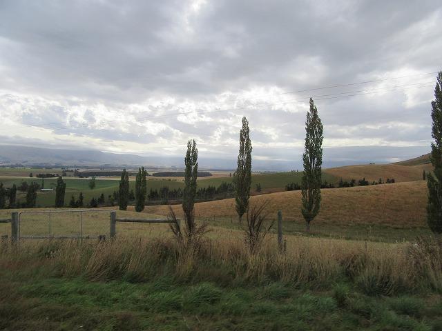 ニュージーランドツアー_e0072023_13145156.jpg