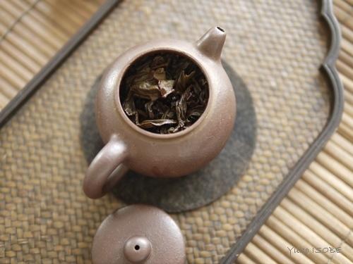 2月のおもてなしの中国茶レッスン_a0169924_22360150.jpg