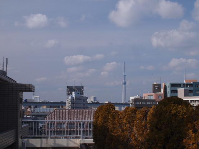 江戸川区T様邸木製建具の調査確認に。_a0214329_14410066.jpg