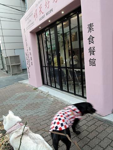 散歩屋日誌【34】_c0062832_15231018.jpg