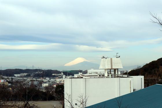 日本画 ~ 鶴の飛翔 ~_e0222340_13512128.jpg