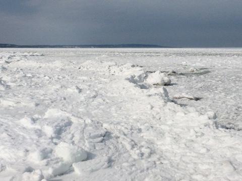 流氷接岸_e0405754_22205697.jpg