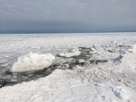流氷接岸_e0405754_22211688.jpg
