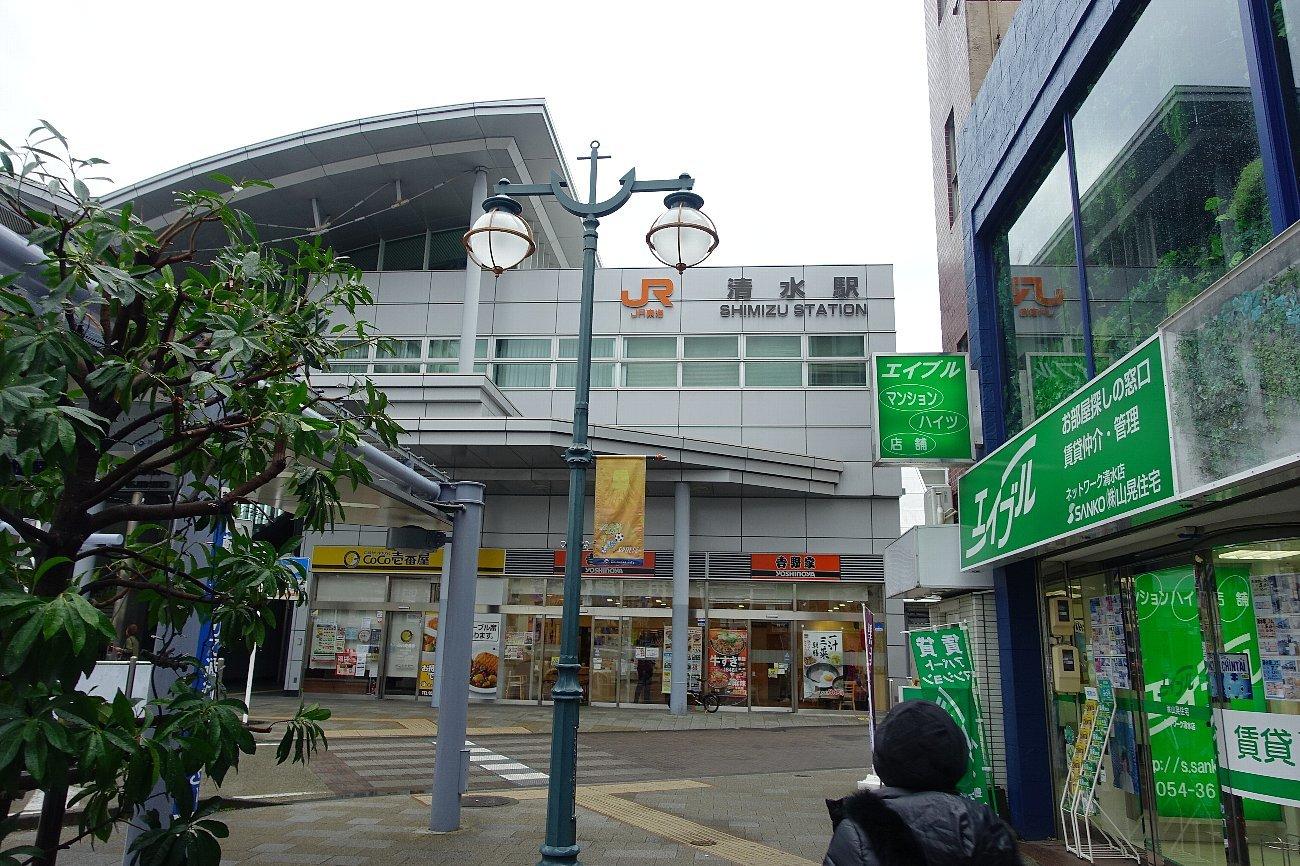 帰路は静岡駅から_c0112559_08265652.jpg