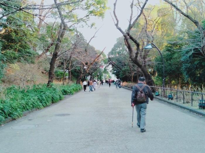 追悼 公園の片隅で暮らしていた女性 _d0134281_19275340.jpg