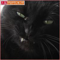 猫の変顔_a0389088_17441881.jpg