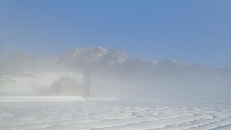 昨日の朝にはマイナス8.5度まで下がりました_c0336902_21101655.jpg