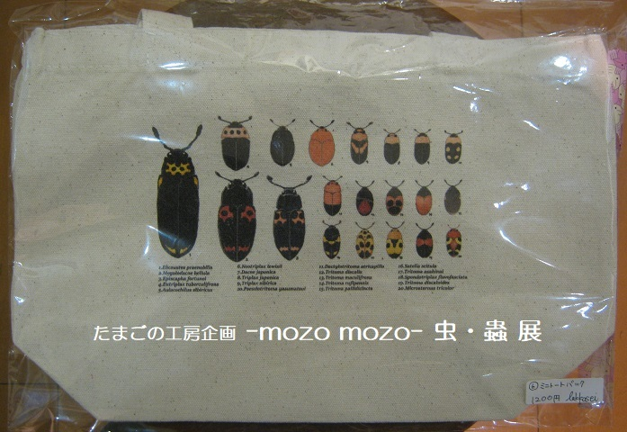 たまごの工房企画 -mozo mozo- 虫・蟲 展  その3_e0134502_17552632.jpg