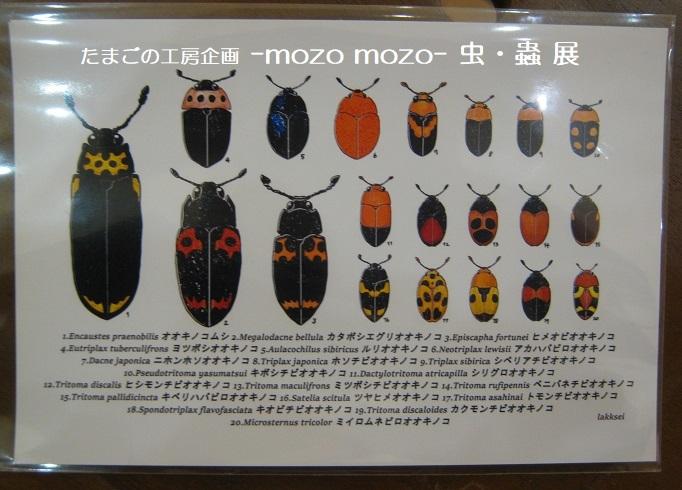 たまごの工房企画 -mozo mozo- 虫・蟲 展  その3_e0134502_17553483.jpg