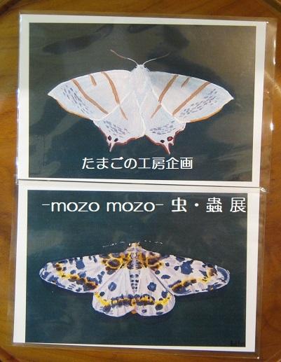 たまごの工房企画 -mozo mozo- 虫・蟲 展  その3_e0134502_17553845.jpg