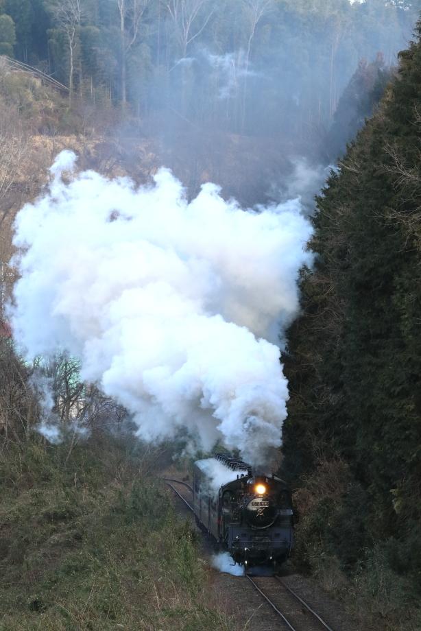 煙高らかに分水嶺を登る汽車 - 2020年・真岡鉄道 -_b0190710_21433766.jpg